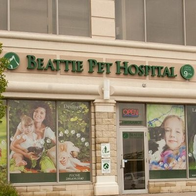 Beattie Pet Hospital Hamilton