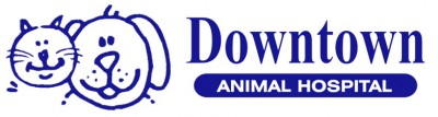 Downtown Animal Hospital