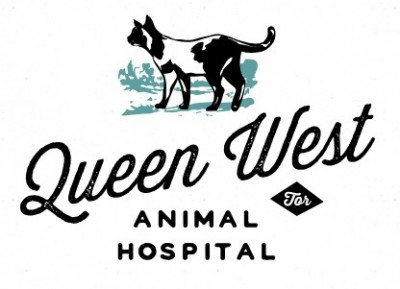 Queen West Animal Hospital
